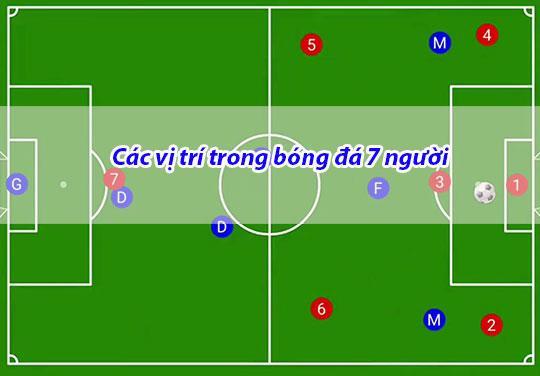 Tìm hiều các vị trí trong bóng đá 7 người
