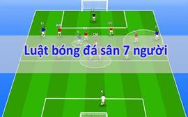 Luật bóng đá sân 7 người mới nhất từ Liên đoàn bóng đá Việt Nam