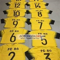 Mẫu in áo bóng đá số 9